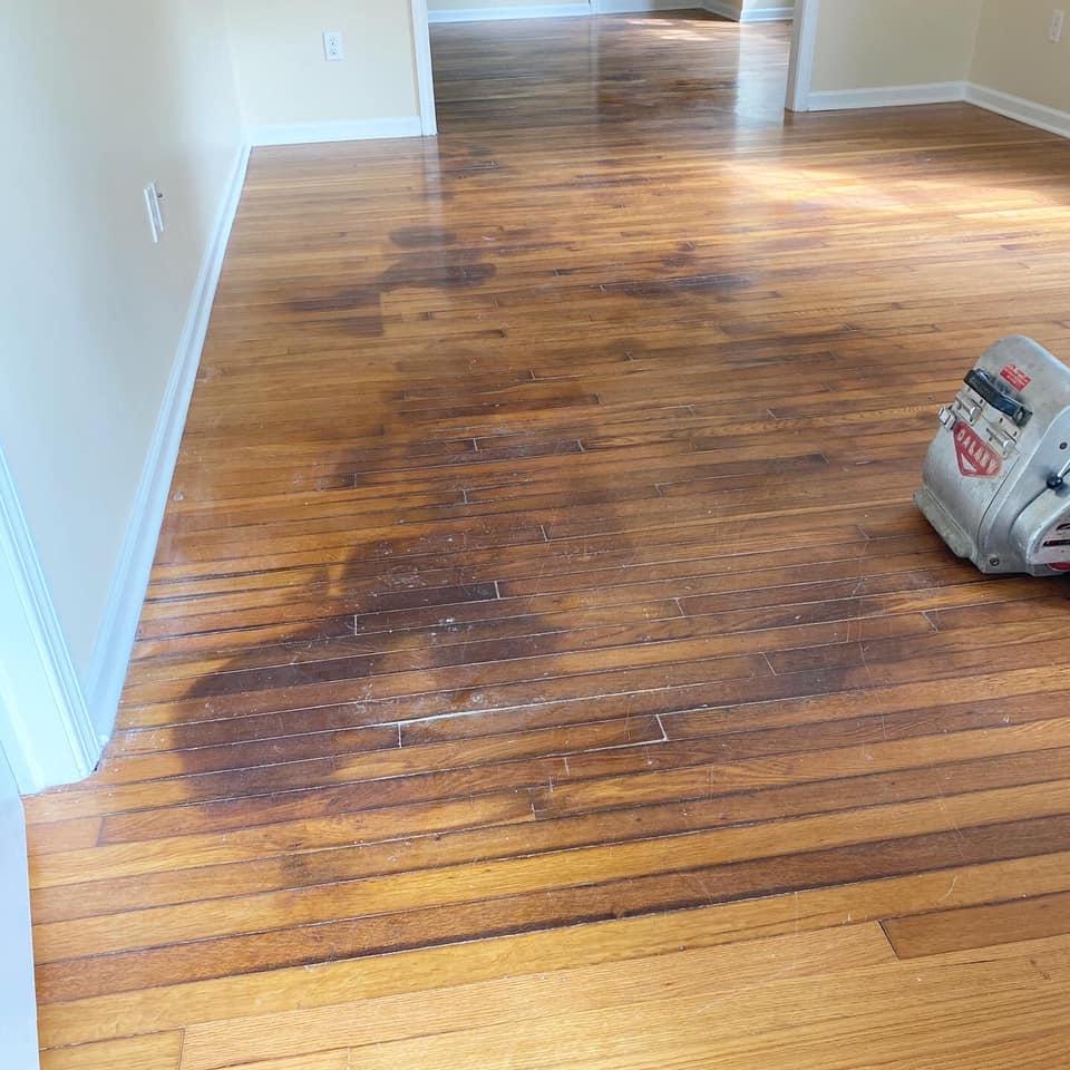 Refinish Hardwood Flooring With Pet